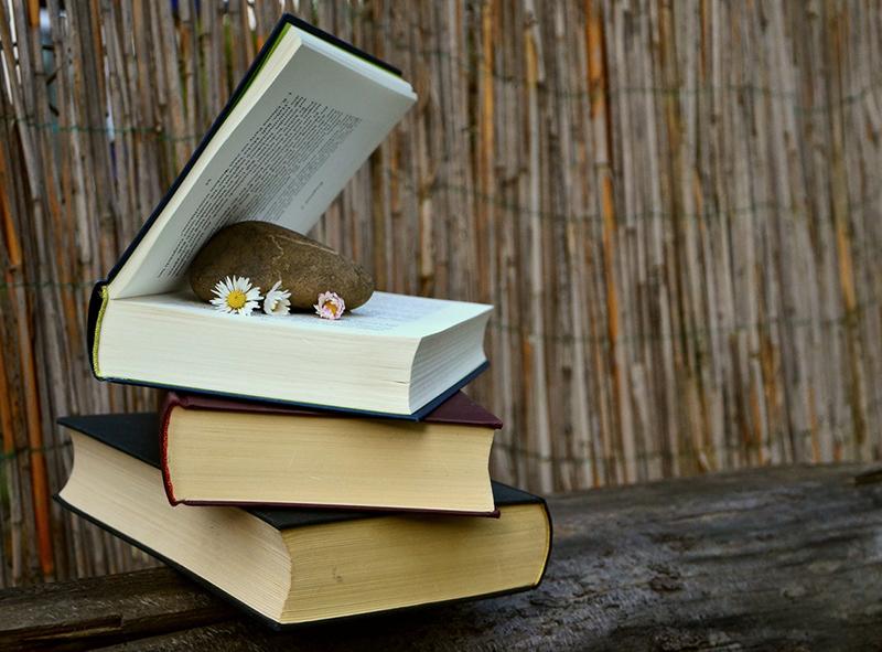 livros empilhados com flores e uma pedra no meio do livro do topo